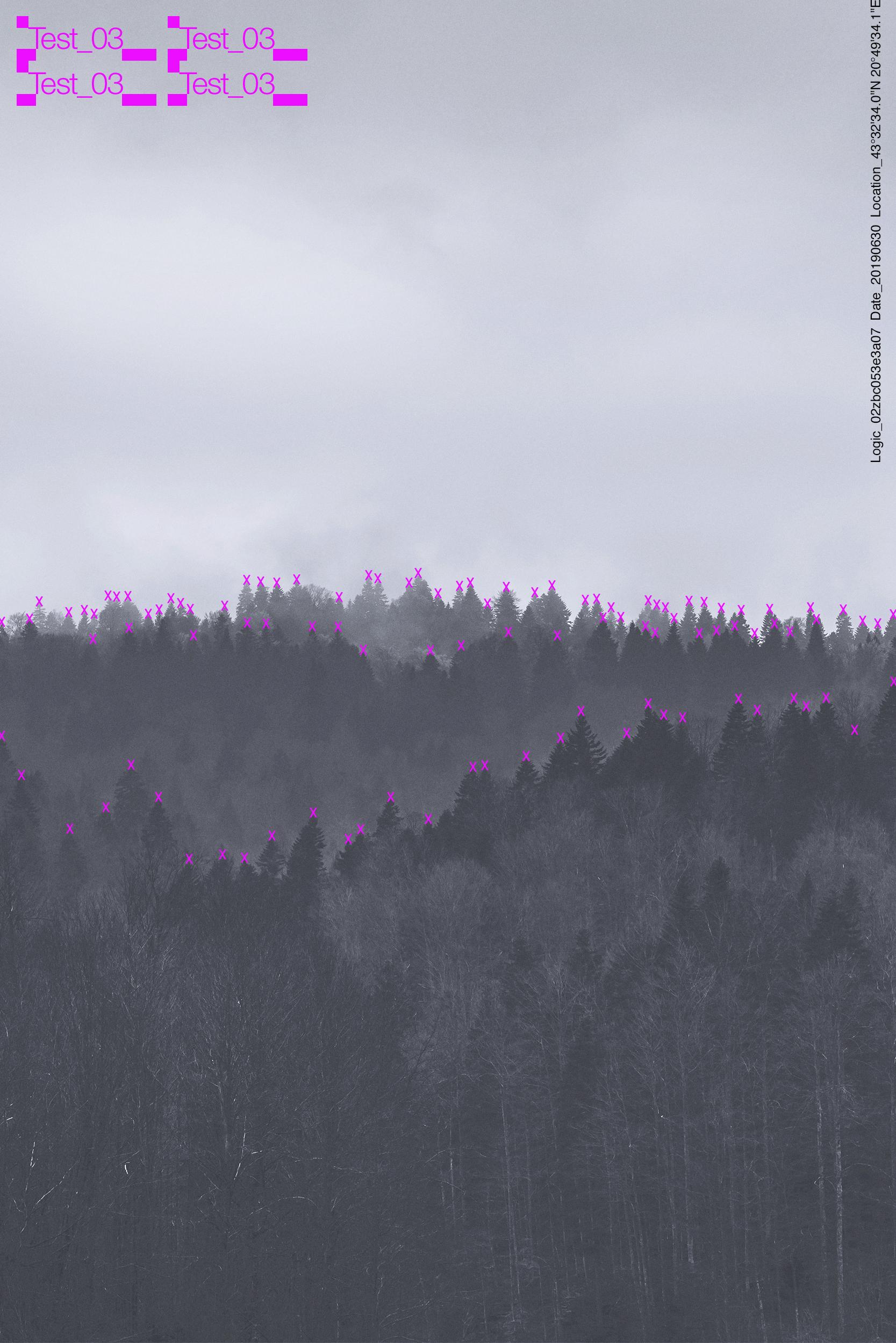 01_Forest_3_V3